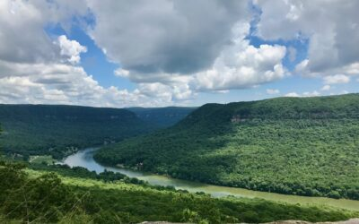 Prentice Cooper State Forest – 1st On My List of Amazing Tennessee Sights