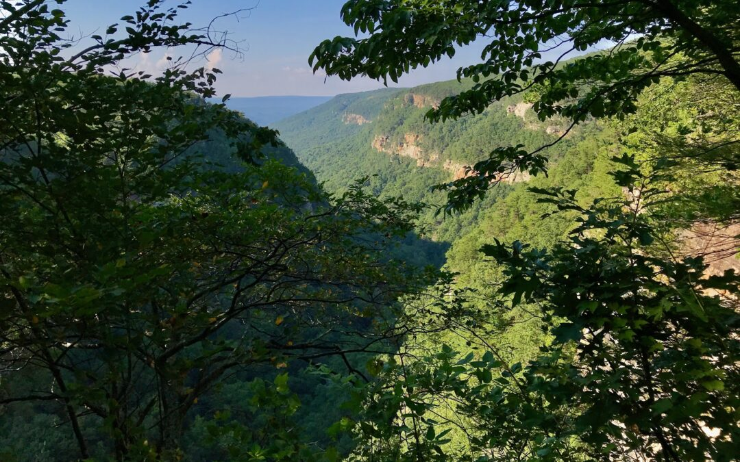 My 1st Visit to Cloudland Canyon State Park was Great!